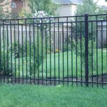 black iron fence and shrubbies